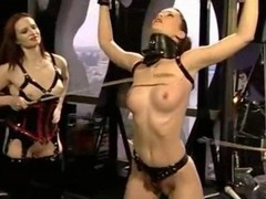 Bdsm, Domination, Groupe, Shemale dominations