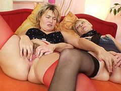 Lesbian, Mature, Mature lesbians seducing young cubs threesome