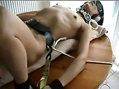 Tied, Dildo, Tied stretched whipped